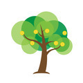 Business finance profit concept. Money growth up like tree - PhotoDune Item for Sale