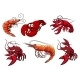 Seafood Characters of Shrimp Prawns and Lobsters - GraphicRiver Item for Sale