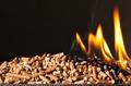 wood pellet - PhotoDune Item for Sale