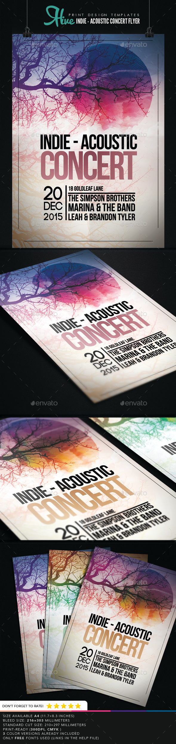 GraphicRiver Indie Acoustic Concert Flyer 9145966
