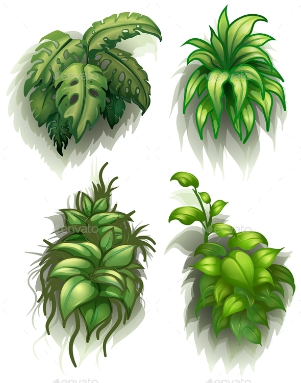 GraphicRiver Leafy Plants 9149734