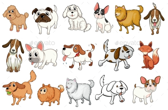 GraphicRiver Different Breeds of Dogs 9150863