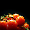 Wet cherry tomatoes - PhotoDune Item for Sale