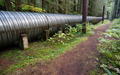 Large Pipeline Industrial Pipe Indistry Construction Viaduct - PhotoDune Item for Sale