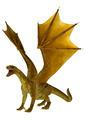 Golden Dragon  - PhotoDune Item for Sale
