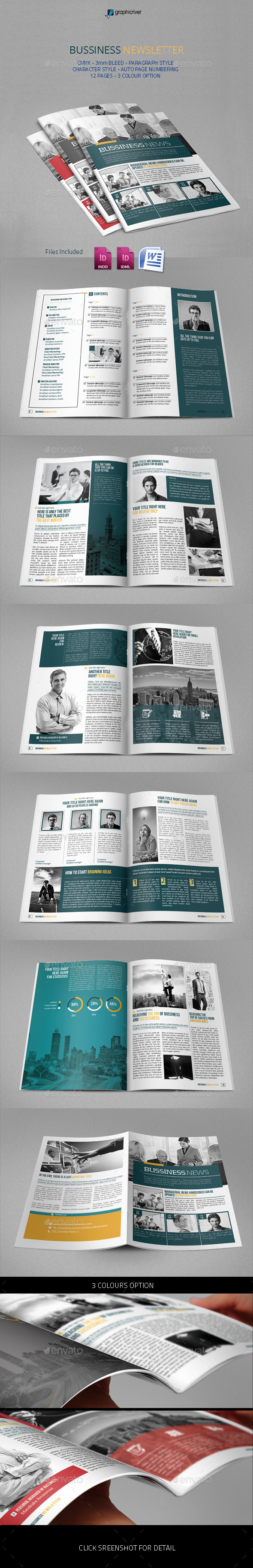 GraphicRiver Bussiness Newsletter 9164406