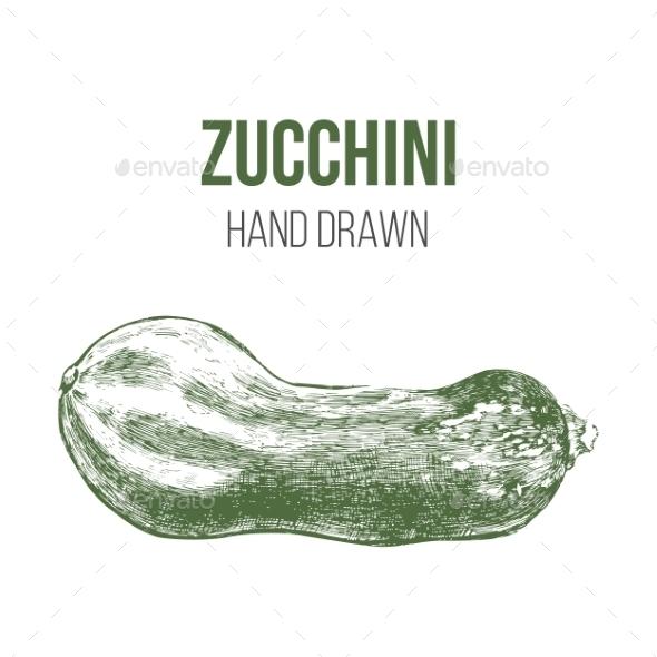 GraphicRiver Hand Drawn Zucchini 9164468