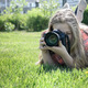 photographer - PhotoDune Item for Sale
