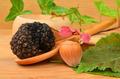 Truffle and hazelnut - PhotoDune Item for Sale