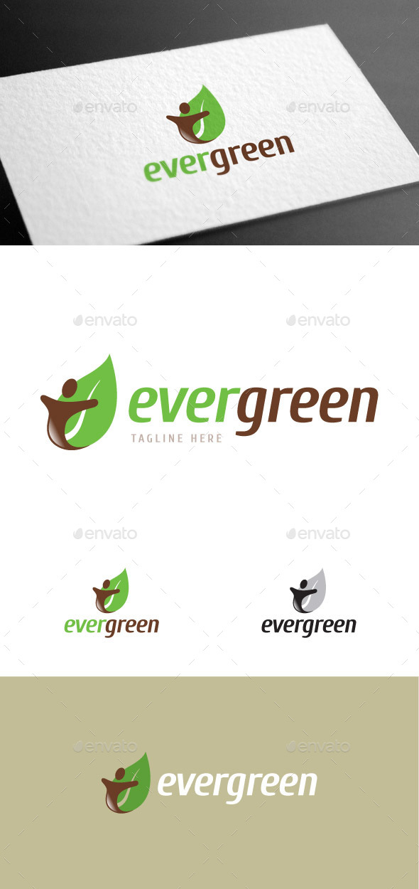 GraphicRiver Evergreen Logo Template 9168063