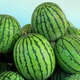 Watermelons pile - PhotoDune Item for Sale