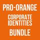 Pro-Orange Corporate Identities Bundle - GraphicRiver Item for Sale