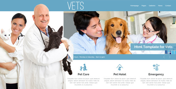 ThemeForest VETS Veterinary Medical Health Clinic Template 9179700