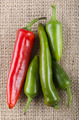 green and red chili pepper - PhotoDune Item for Sale