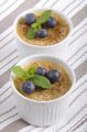 creme brulee with blueberries and mint - PhotoDune Item for Sale