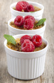 creme brulee with raspberries and mint - PhotoDune Item for Sale