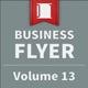 Business Flyer - Volume 13 - GraphicRiver Item for Sale