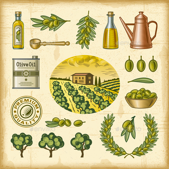 GraphicRiver Vintage Colorful Olive Harvest Set 9187701