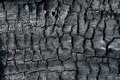 Details on the surface of charcoal. - PhotoDune Item for Sale