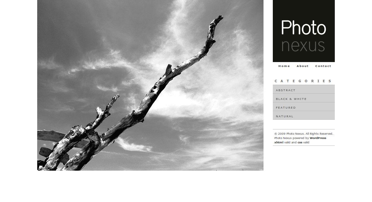 Photo Nexus WordPress gallery 2 in 1 - Photo Nexus Bright HomeHome page of Bright theme
