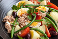 Salad Nicoise - PhotoDune Item for Sale