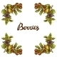 Sketch Berries Frame - GraphicRiver Item for Sale