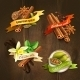 Spices Badges Set - GraphicRiver Item for Sale