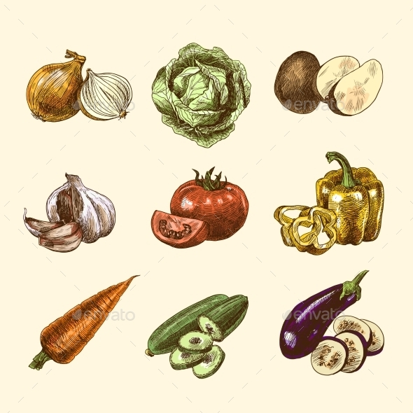 GraphicRiver Vegetables Sketch Set in Color 9190181
