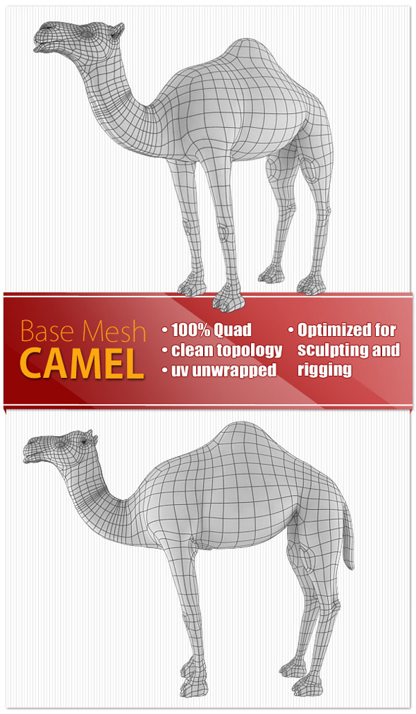 3DOcean Camel 9190597