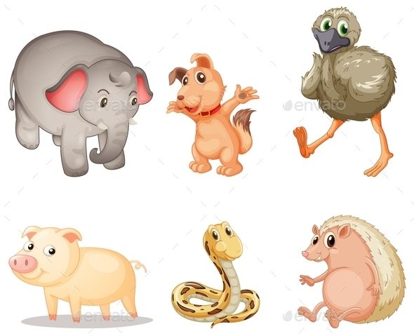 GraphicRiver Animal Series 9190598