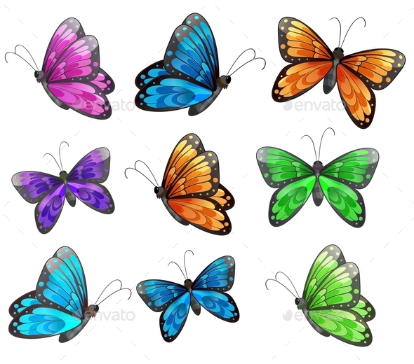 GraphicRiver Nine Colorful Butterflies 9191357