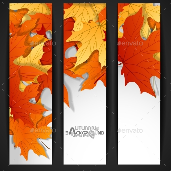 GraphicRiver Autumn Leaves Background 9192773