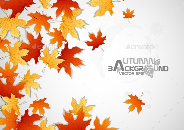 GraphicRiver Autumn Leaves Background 9192776