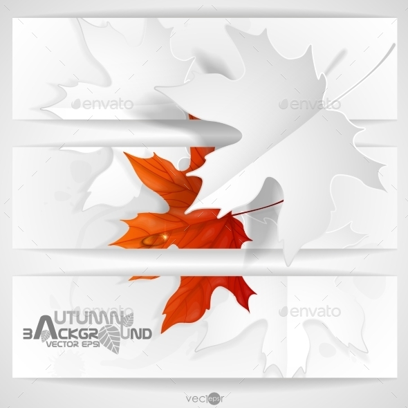 GraphicRiver Autumn Leaves Background 9192778