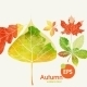 Autumn Background With Leaves - GraphicRiver Item for Sale