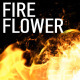 Fire Flower Logo - VideoHive Item for Sale