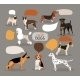 Set of Dog Breeds with Speech Bubbles - GraphicRiver Item for Sale