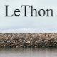 LeThon