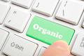 Green organic key on keyboard - PhotoDune Item for Sale