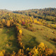 Early Autumn - Flying Over the Forest - VideoHive Item for Sale