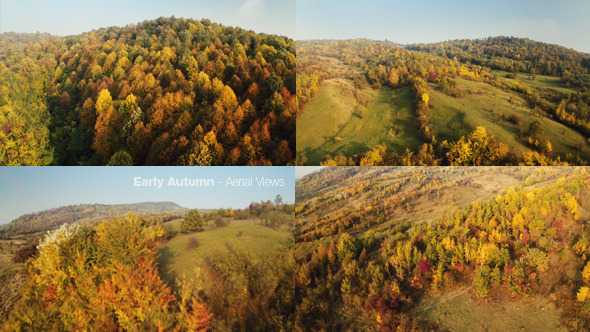 VideoHive Early Autumn Flying Over the Forest 9201750
