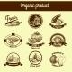 Vegetables Sketch Banner Set - GraphicRiver Item for Sale