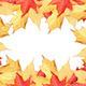 Fall leaves border - PhotoDune Item for Sale