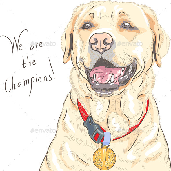 GraphicRiver Labrador Retriever Champion 9210115