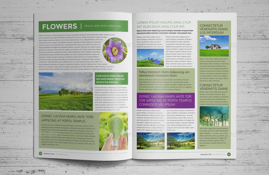 12 Page Eco Newsletter Template InDesign by JanySultana – Indesign Newsletter