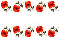 Background with a border of red flowers - PhotoDune Item for Sale