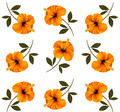 Pattern of beautiful yellow flowers. - PhotoDune Item for Sale