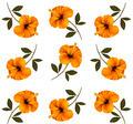 Pattern of beautiful yellow flowers. - PhotoDune Item for Sale