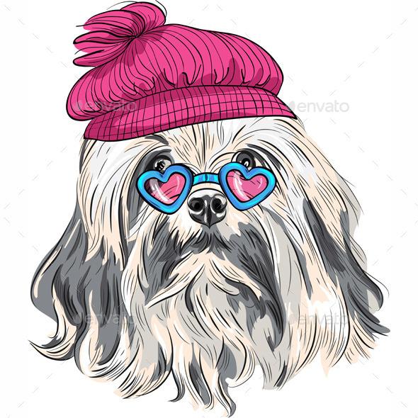 GraphicRiver Cartoon Hipster Lowchen Dog 9211935