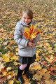 girl with yellow leaves standing in the park - PhotoDune Item for Sale